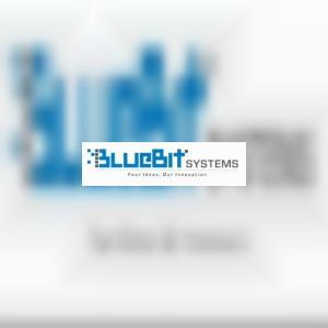 BlueBitSystems
