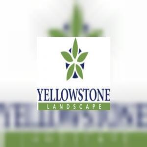 yellowstonelandscape