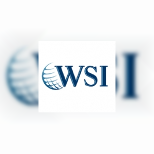 wsifranchisereview