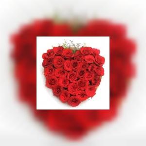 floristshopinmumbai