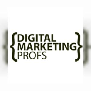 digitalmarketingprofsblog