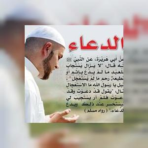 MuhammadMayhoub