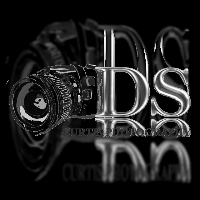 dscurtisphotography