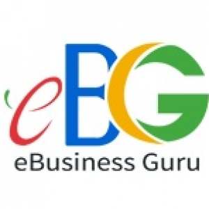 ebusinessguru